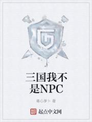 三国我不是NPC